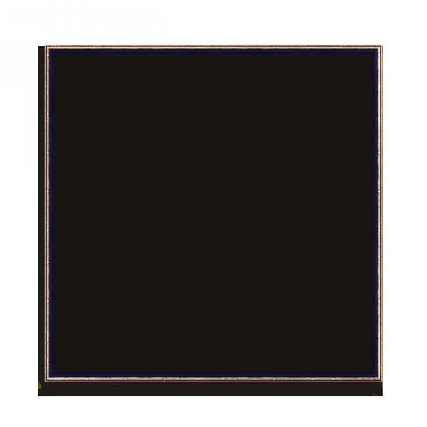0220-9950_ganz_RAHMEN_L_13